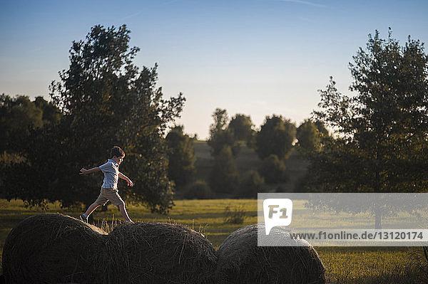 Playful boy walking on hay bales at field
