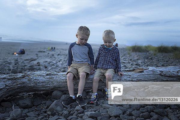 Glückliche Geschwister sitzen auf umgefallenem Baumstamm gegen den Himmel