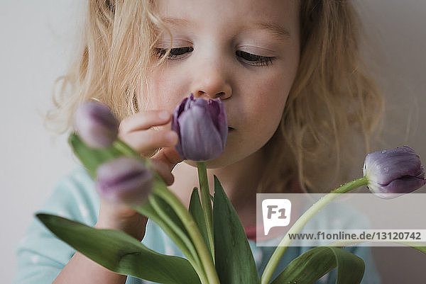 Close-up of girl touching tulips while standing against wall