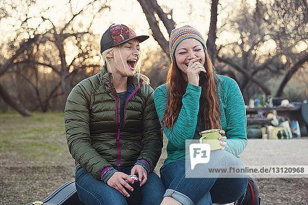 Fröhliche Freundinnen genießen auf dem Campingplatz