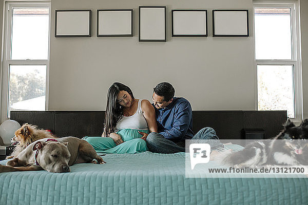 Loving expectant couple sitting on bed with dogs at home