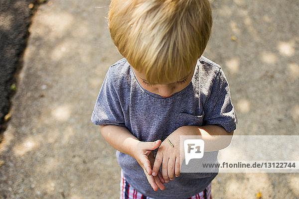 Hochwinkelansicht eines Jungen  der eine Raupe auf der Hand betrachtet