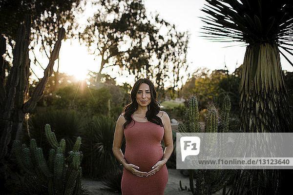Porträt einer schwangeren Frau mit Händen auf dem Bauch  die bei Sonnenuntergang im Park steht