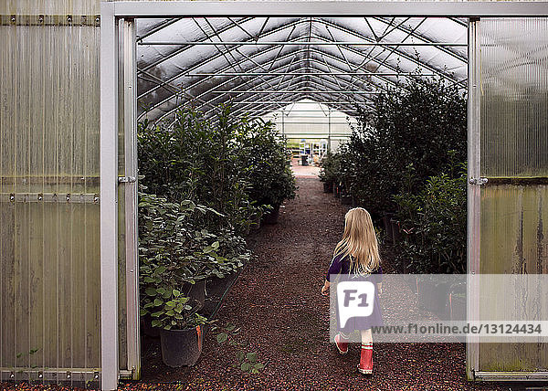 Rear view of girl entering in greenhouse