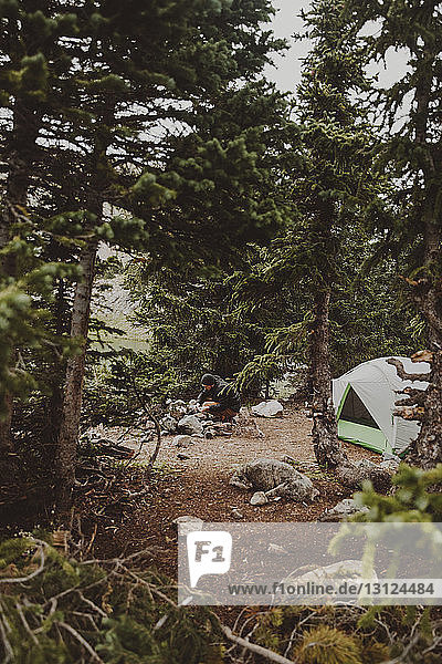 Hiker camping amidst forest