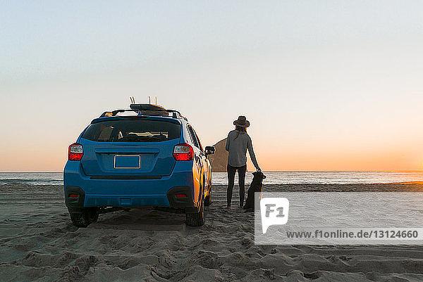 Rückansicht einer Frau mit Hund  die am Strand am Auto steht