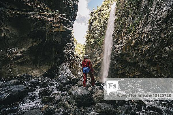 Rückansicht einer Frau  die am Wasserfall im Wald steht