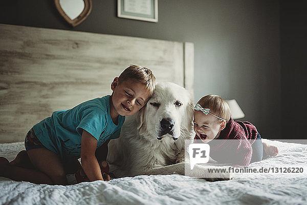 Geschwister spielen zu Hause im Bett mit den Großen Pyrenäen