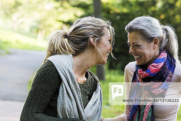 Fröhliche Freundinnen im Park