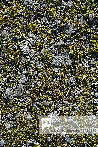 Draufsicht auf die Felsen auf dem Feld