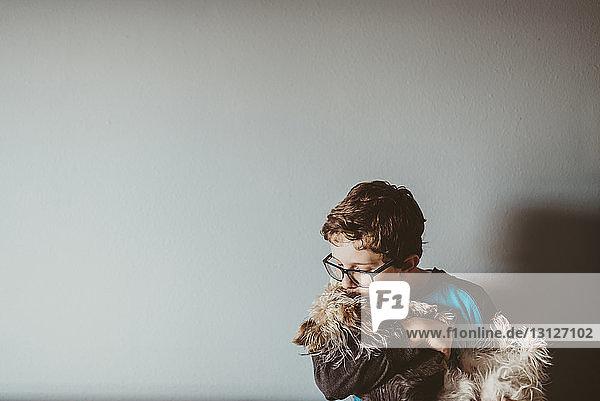 Junge küsst Yorkshire Terrier zu Hause gegen die Wand