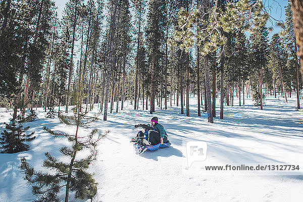 Mutter und Sohn rutschen auf schneebedecktem Feld gegen Bäume