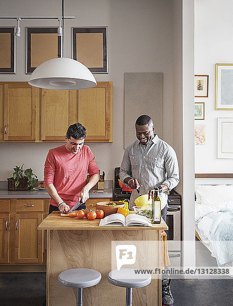 Multi-ethnic gay couple preparing food in kitchen at home