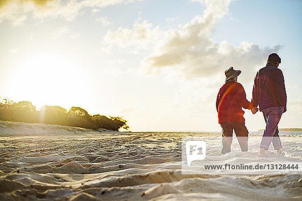 Rückansicht eines älteren Paares  das sich beim Spaziergang am Strand an sonnigen Tagen an den Händen hält