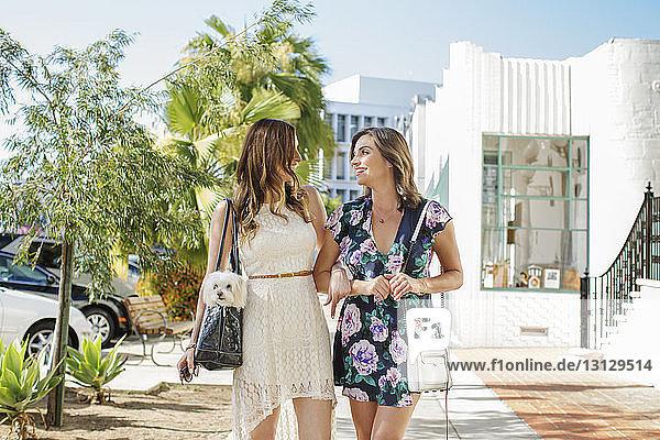 Glückliche Freundinnen unterhalten sich auf dem Bürgersteig in der Stadt