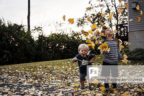 Fröhliche Brüder spielen im Herbst im Garten mit Ahornblättern