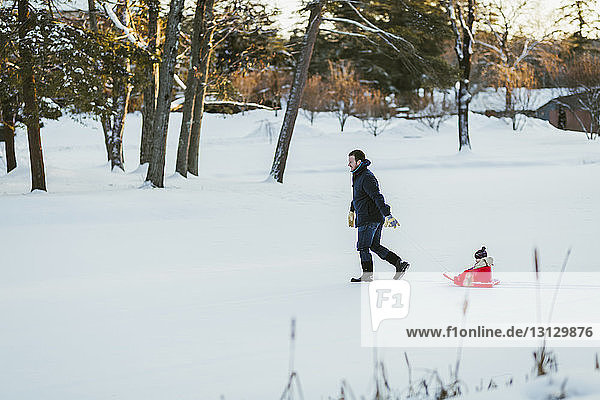 Side view of father pulling sled with daughter on snow covered field at park