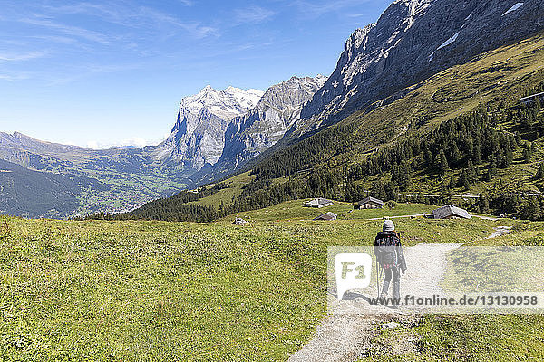 Rear view of female hiker walking on footpath by mountains