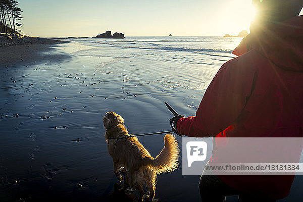 Rear view of hiker with Golden Retriever walking at Ruby beach during sunset