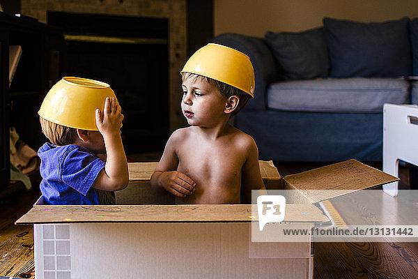 Verspielte Brüder mit Schalen auf dem Kopf  die zu Hause in einem Pappkarton sitzen