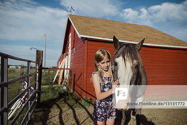 Mädchen streichelt Pferd  während sie am Stall gegen den Himmel steht