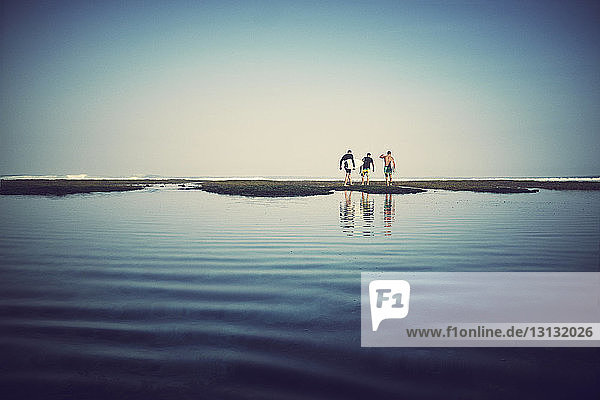 Rear view of friends carrying surfboard while walking on sandbar against clear sky