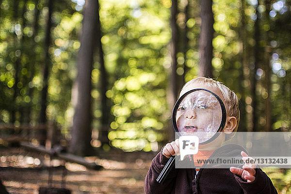Süßer Junge schaut durch eine Lupe  während er im Wald steht