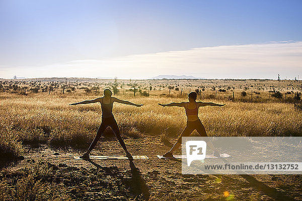 Women with arms outstretched practicing yoga on field against sky
