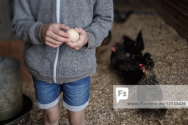 Midsection of girl holding egg in poultry farm