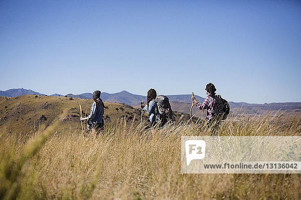 Rückansicht von Freunden auf dem Feld bei klarem Himmel