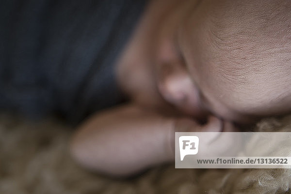 Close-up of baby boy sleeping on rug at home