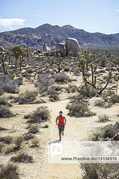 Hochwinkelaufnahme einer Wanderin beim Laufen im Joshua-Tree-Nationalpark an einem sonnigen Tag