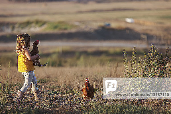 Side view of girl holding hen while walking on field