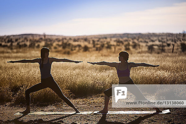Female friends practicing yoga in worrier pose on field