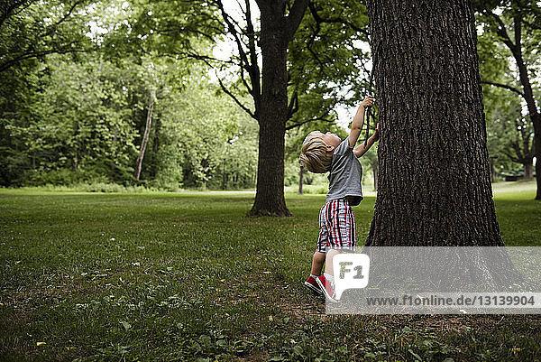 Junge mit Stock auf den Zehenspitzen am Baumstamm stehend
