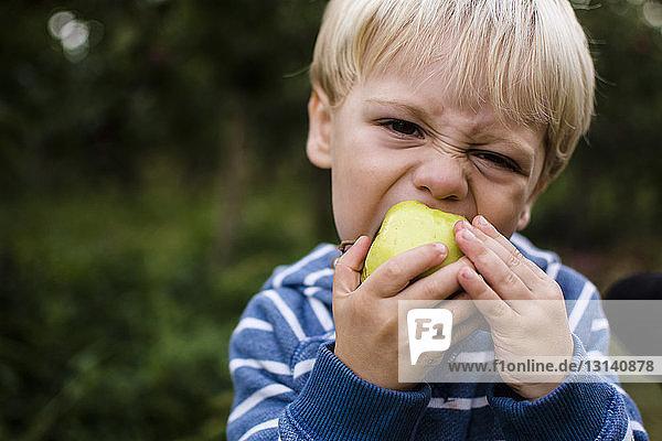 Porträt eines Jungen  der im Hinterhof stehend einen Apfel isst