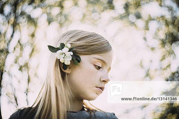 Niedrigwinkelansicht eines Mädchens  das eine Blume trägt  während es gegen den Himmel steht