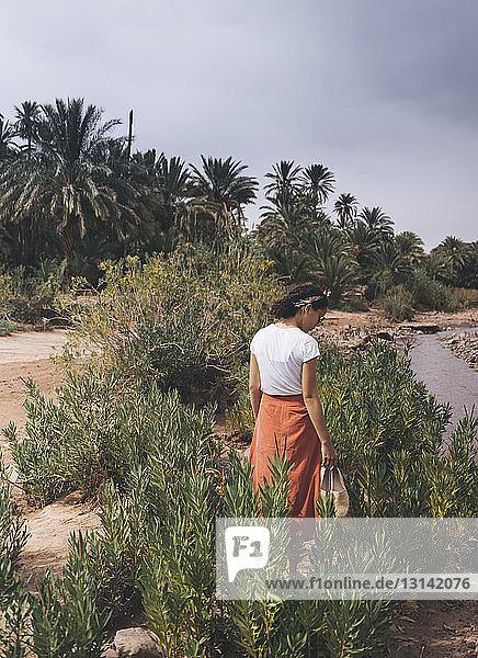 Rückansicht einer Frau  die auf einem Feld inmitten von Pflanzen unter dem Himmel steht