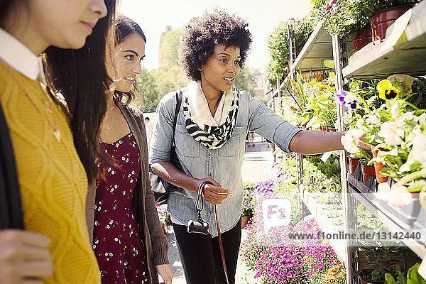 Freundinnen betrachten Blumen am Stand auf dem Markt