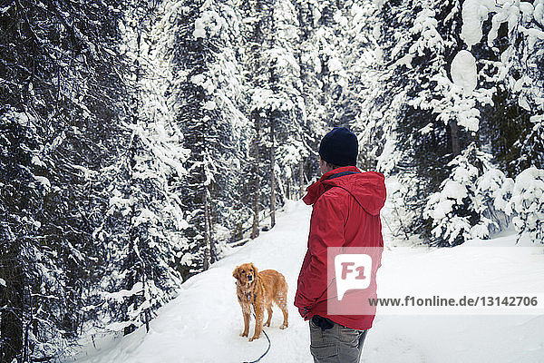 Side view of hiker with Golden Retriever walking on snow covered field at forest