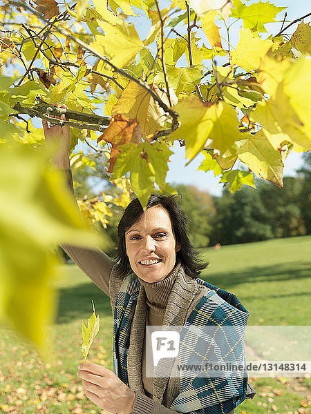 Woman looking through Autumn branches