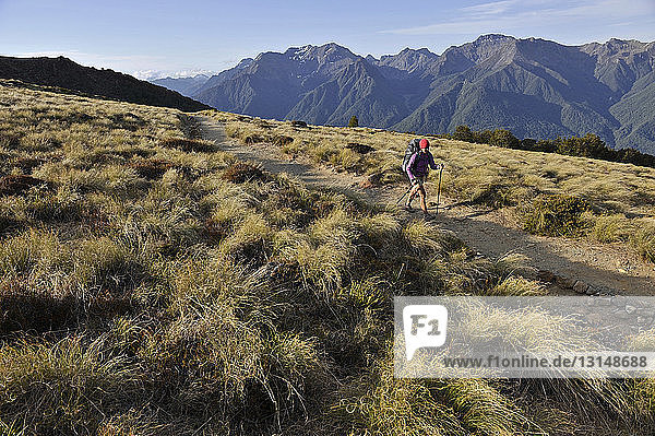 Young female hiker hiking along the Kepler Track  New Zealand