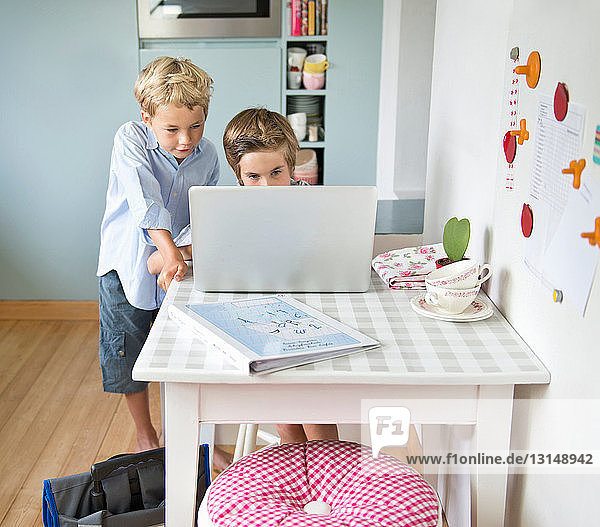 Brothers looking at laptop together