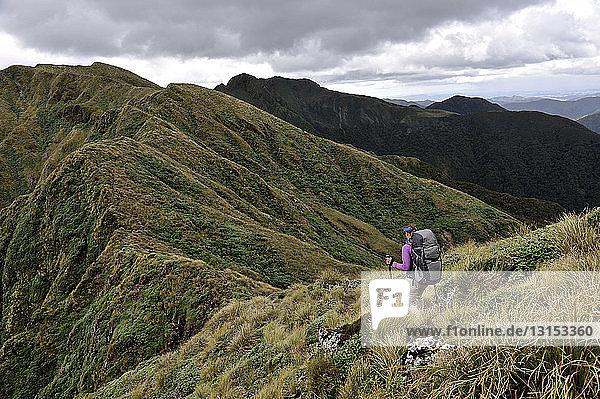 Rear view of female hiker hiking in mountains  Tararua Ridge  New Zealand