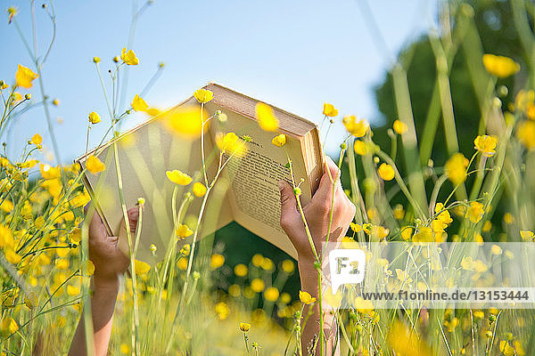 Cropped shot of boy's hands holding book in long grass