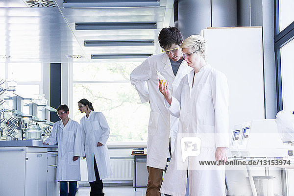 Chemistry students looking at chemical in laboratory