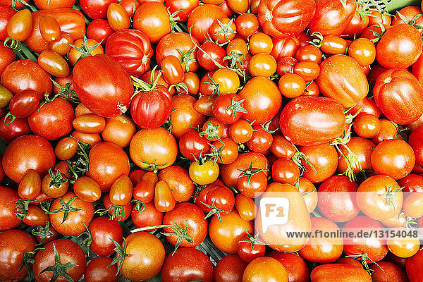 Tomatoes in assorted sizes