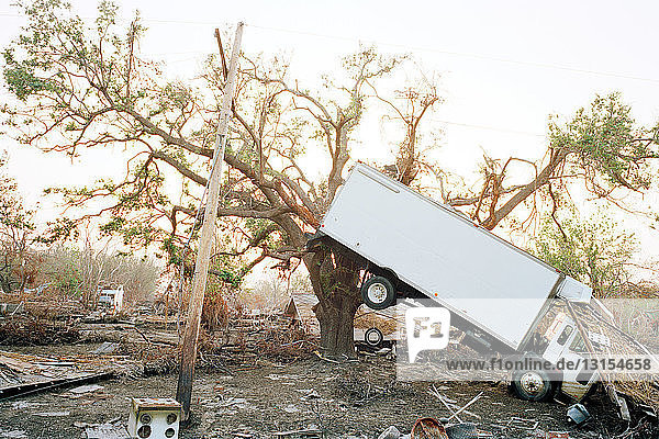 Truck hanging in tree  aftermath of Hurricane Katrina  Plaquemines Parish  Louisiana  USA