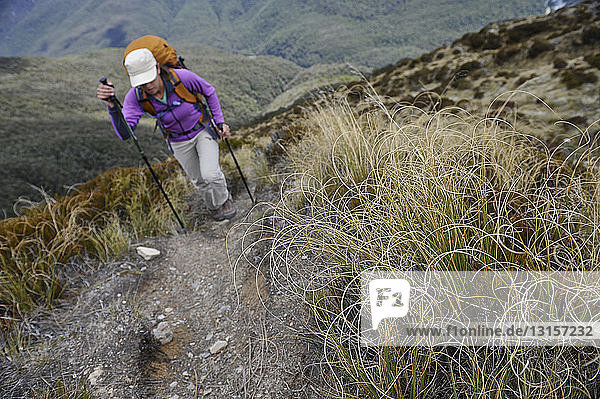 Mid adult woman hiking  New Zealand