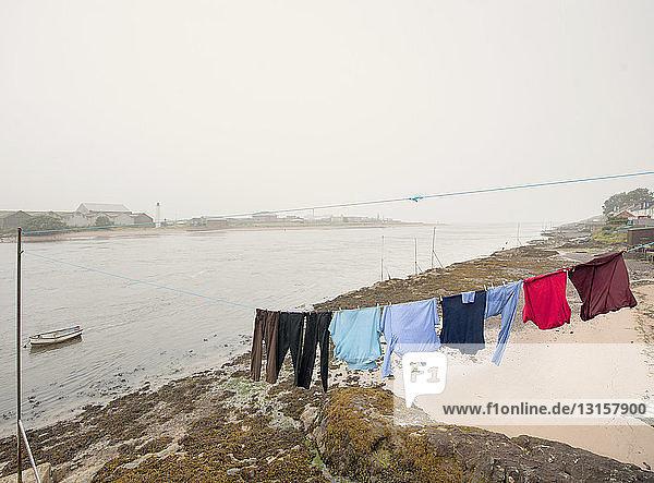 Washing line on beach  Montrose  Aberdeenshire  Scotland Washing line on beach, Montrose, Aberdeenshire, Scotland